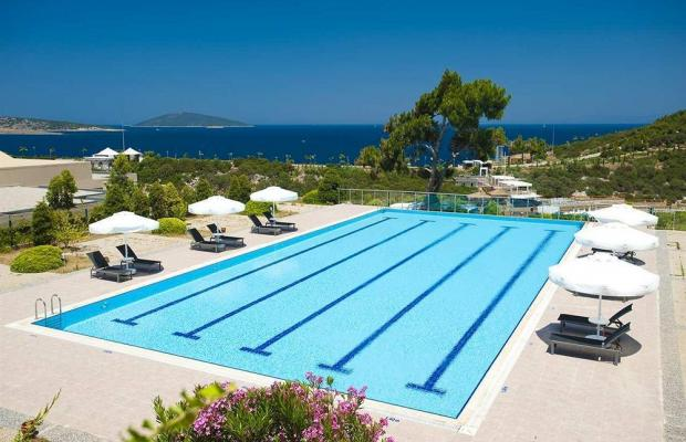 фото отеля Hilton Bodrum Turkbuku Resort & Spa (ex. Bodrum Princess De Luxe Resort & Spa) изображение №17