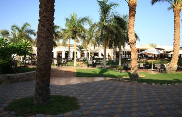фото Dessole Seti Sharm Resort изображение №26