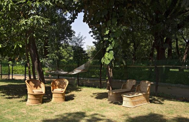 фотографии Vivanta by Taj - Sawai Madhopur Lodge изображение №68