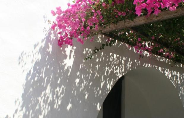 фотографии Petra Holiday Village изображение №24