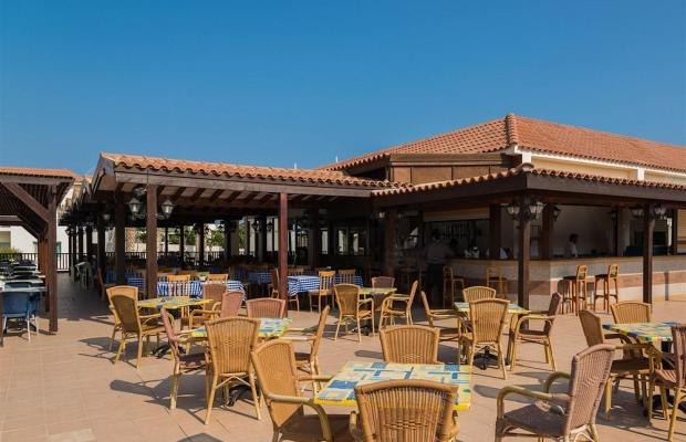 фотографии отеля Tsokkos Paradise Village изображение №35