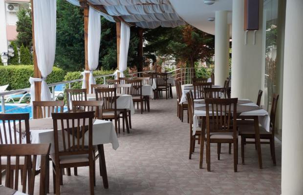 фото отеля Пальма изображение №13