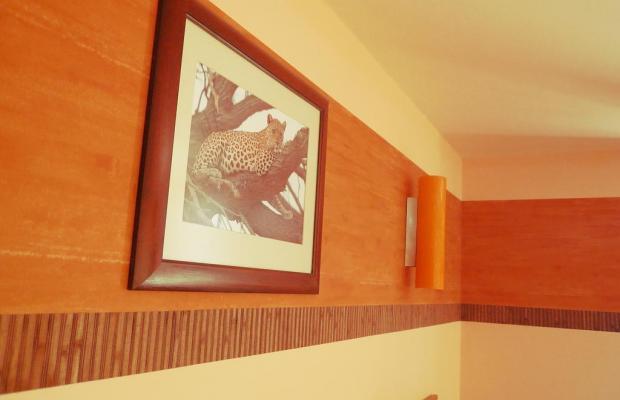 фото отеля Impala Hotel изображение №5