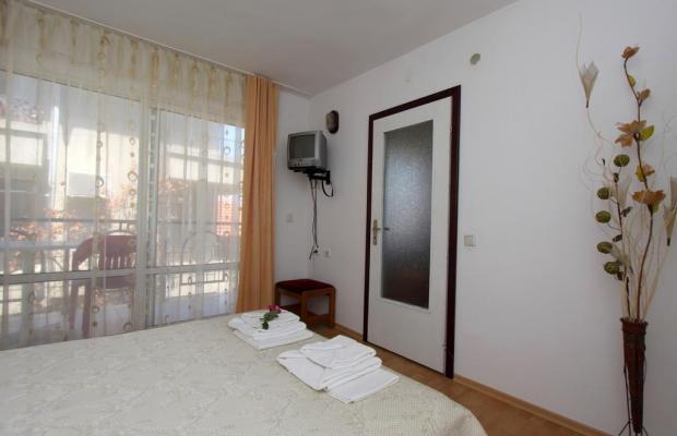 фотографии Verona изображение №32