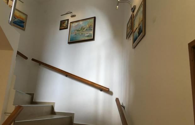 фотографии отеля Golden Fish (Золотая Рыбка) изображение №11