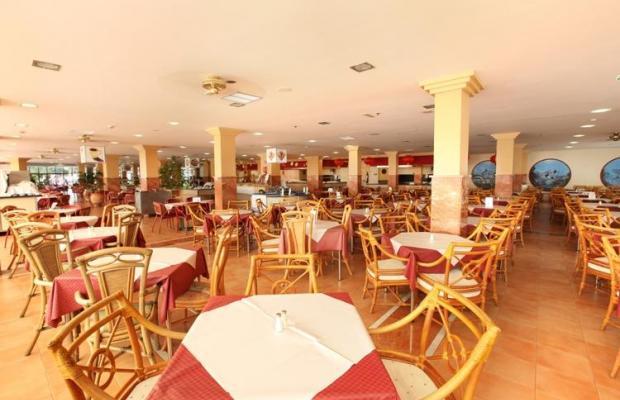 фотографии отеля IFA Interclub Atlantic Hotel изображение №3
