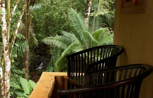 фото отеля Copa De Arbol Beach & Rainforest Resort изображение №13