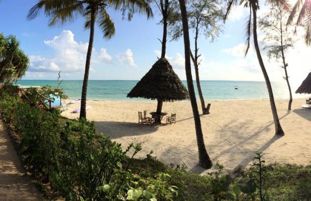 фотографии Pongwe Beach изображение №4