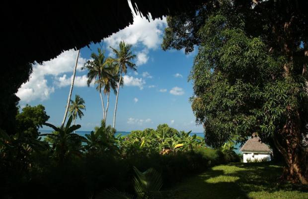фото отеля Chuini Zanzibar Beach Lodge изображение №37