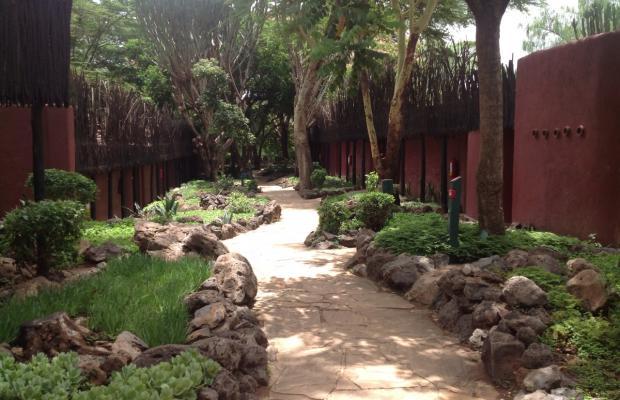 фотографии Amboseli Serena Safari Lodge изображение №24
