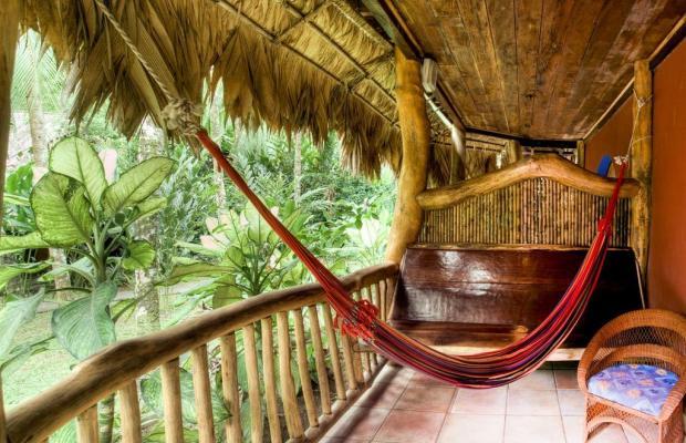 фотографии отеля Cariblue Beach and Jungle Resort изображение №19