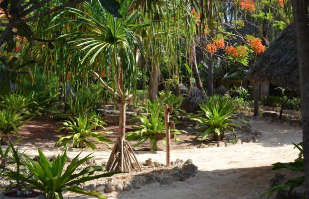 фото Matemwe Beach Village изображение №10