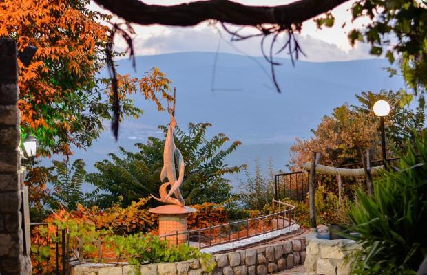 фотографии Ruth Rimonim Hotel изображение №24