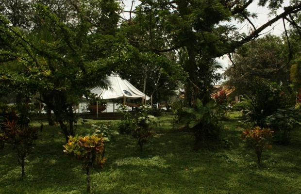 фотографии отеля ilan-ilan Trails & Lodge изображение №7