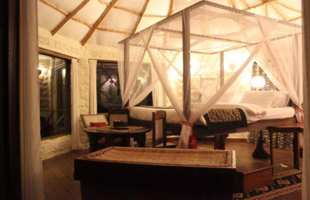 фото отеля The Cove Treehouses (ex. The Cove Retreat) изображение №9