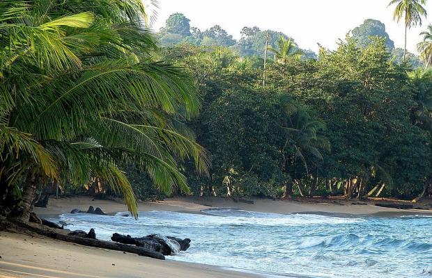 фотографии Suerre Caribbean Beach изображение №16