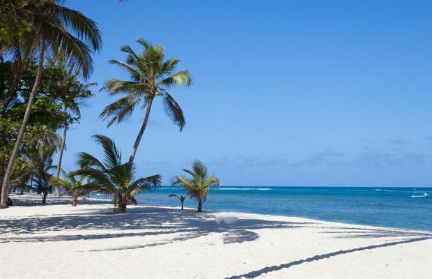 фото Amani Tiwi Beach Resort изображение №22