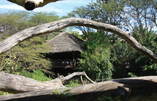 фото Mara Simba Lodge изображение №18