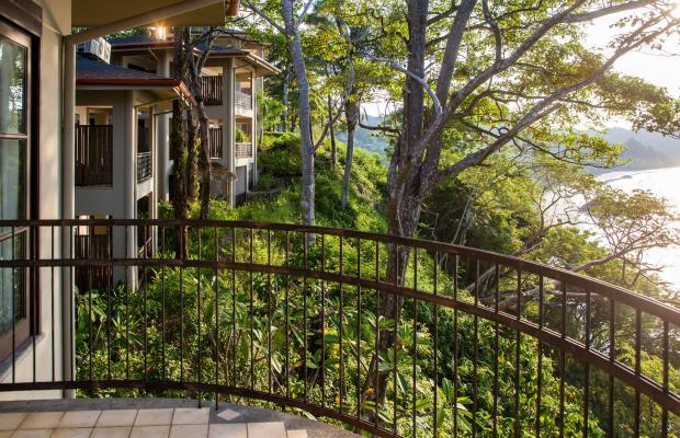 фотографии Arenas del Mar Beachfront & Rainforest Resort изображение №32