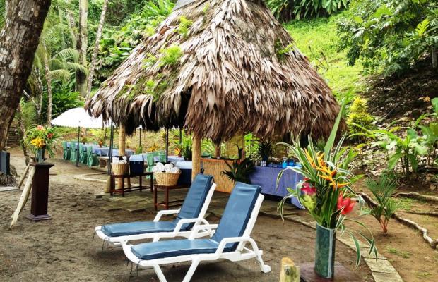 фото отеля Casa Corcovado Jungle Lodge изображение №97