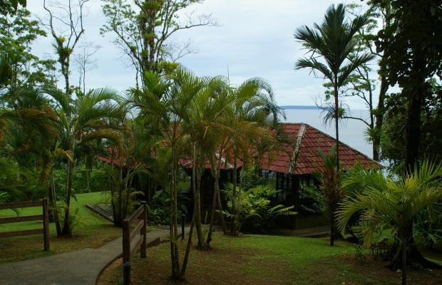 фото отеля Casa Corcovado Jungle Lodge изображение №81