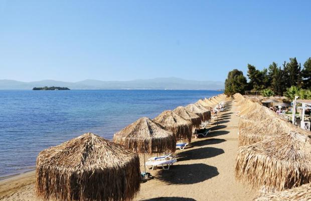 фото отеля Grand Bleu Beach Resort изображение №41