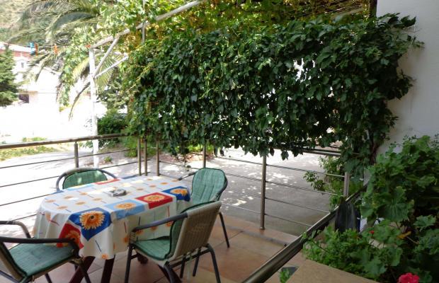 фотографии Apartments Milica изображение №24