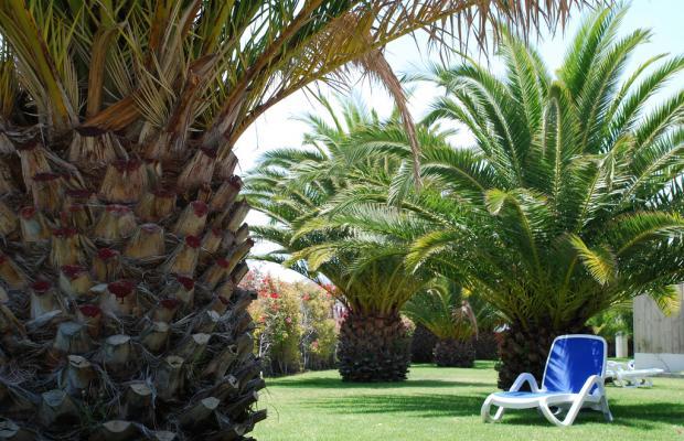 фото Costa Calero Talaso & Spa (ex. Iberostar Costa Calero) изображение №6