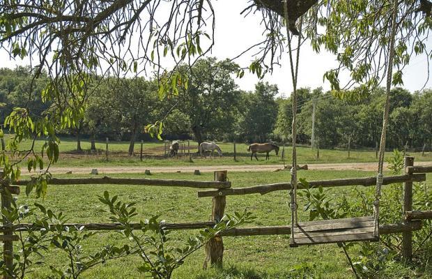 фотографии Villa Paradiso изображение №32