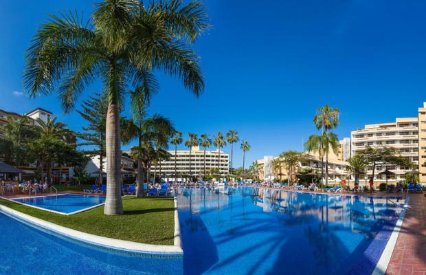 фотографии отеля Blue Sea Puerto Resort (ex. Hotasa Puerto Resort; Canarife Palace) изображение №7