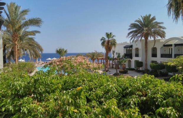 фото отеля Red Sea Hotels Sharm Plaza (ex. Crowne Plaza; Charm Life Garden Reef) изображение №5