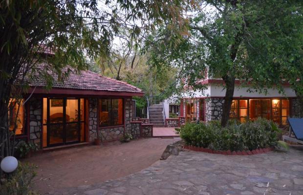 фотографии отеля Tiger Moon Resort изображение №7