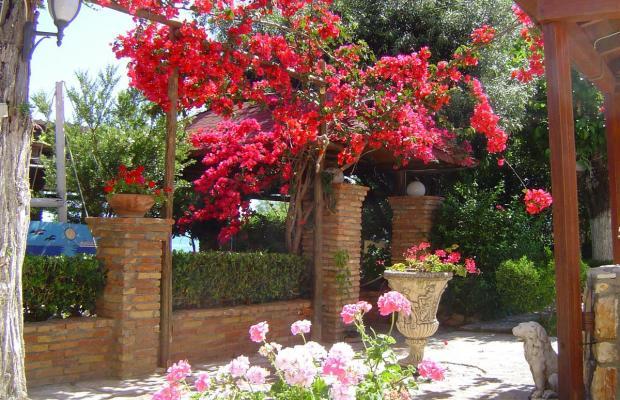 фото отеля Castella Beach изображение №13