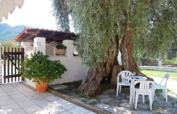 фотографии Posidonia Apartments изображение №8