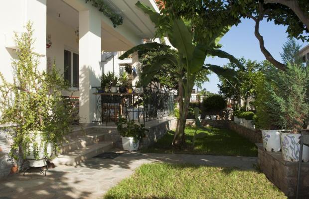 фото отеля Pansion Matoula изображение №13