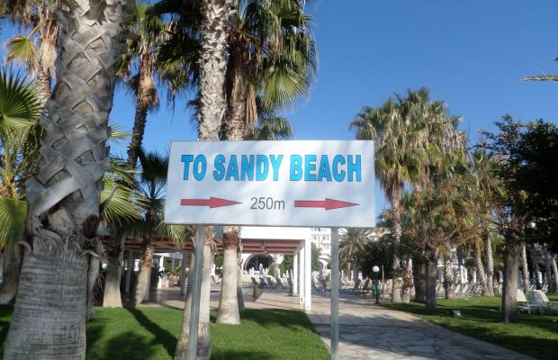 фотографии Louis Phaethon Beach изображение №12