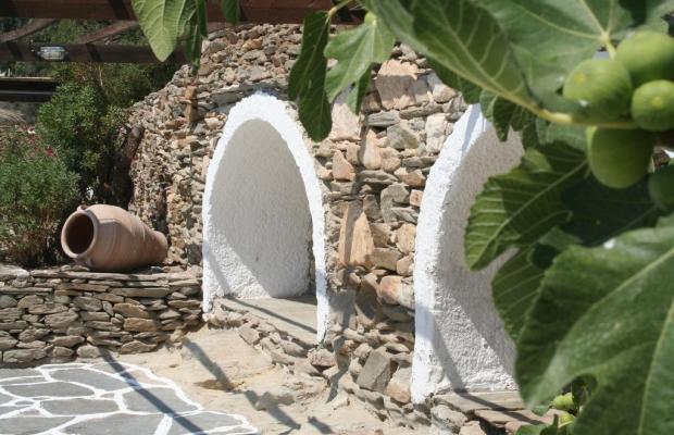 фотографии отеля Petra Holiday Village изображение №15