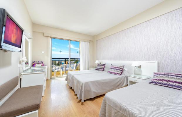 фото отеля Pavlo Napa Beach изображение №25