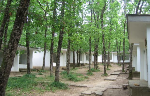 фотографии Kedar Villas (Виллы Кедр) изображение №12