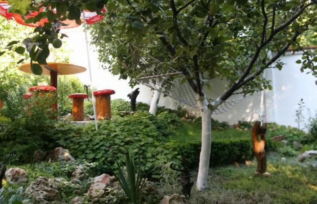 фотографии Villa Exotica (Вилла Экзотика) изображение №8