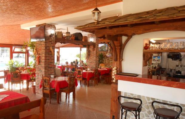 фотографии отеля Sunny Holiday (Сани Холидей) изображение №7