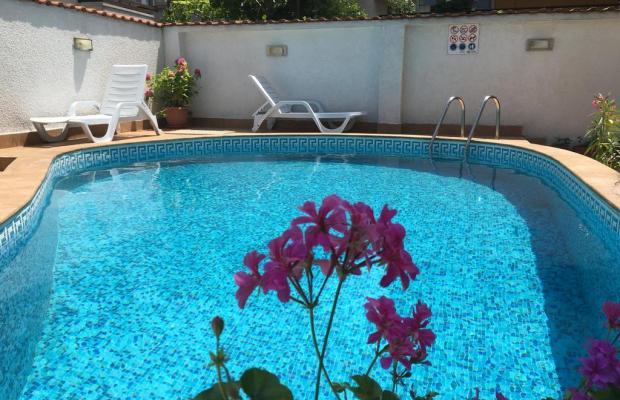 фотографии Villa Diana (ex. Oasis) изображение №12