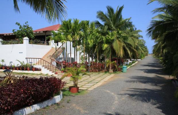 фотографии Chariot Beach Resort изображение №8