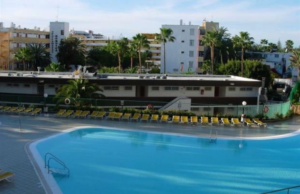 фото Koka Apartamentos изображение №2