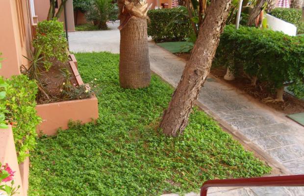 фотографии отеля Apartamentos Estrella De Mar изображение №3