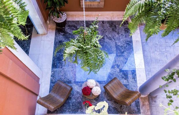 фотографии отеля Serenity Amadores изображение №19
