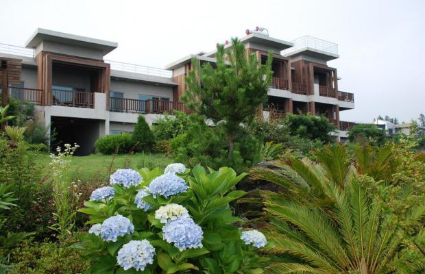 фото отеля Jejueco Suites изображение №33
