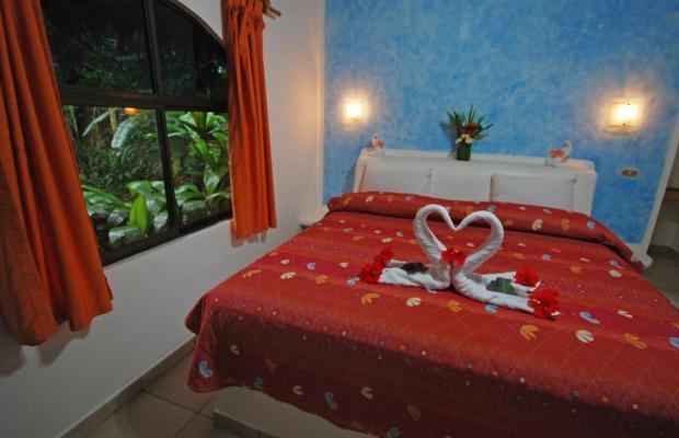 фото отеля Cariblue Beach and Jungle Resort изображение №85