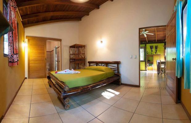 фотографии отеля Cariblue Beach and Jungle Resort изображение №35