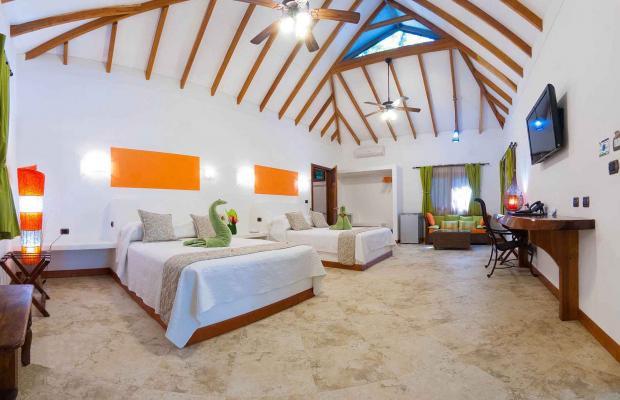фотографии отеля Cariblue Beach and Jungle Resort изображение №23